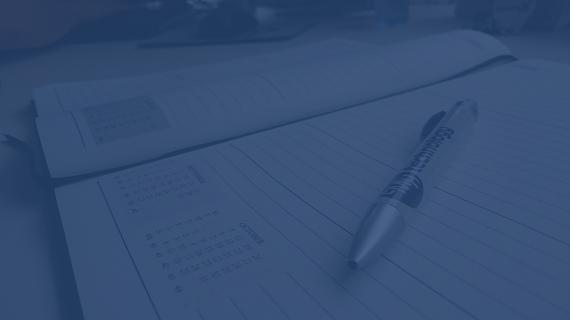 pen diary smaller
