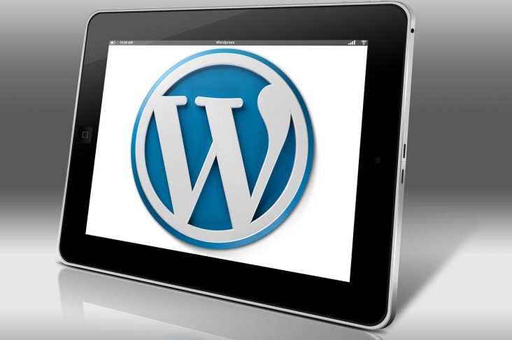 Image: WordPress logo on screen